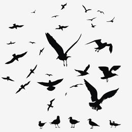 Postzegels uit Lesotho     van het thema Vogels  '