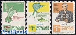 Delgado 3v