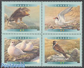 Birds 4v [+] or [:::]