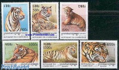 Tigers 6v