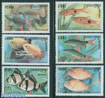Fish 6v