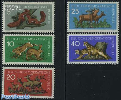 Forest animals 5v