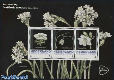 Flowers 3v m/s