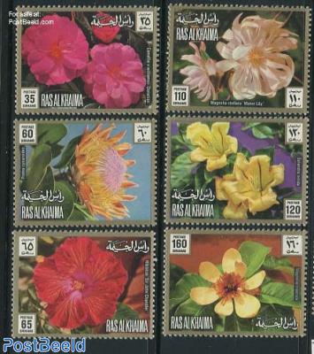 Flowers 6v