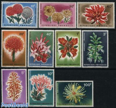 Flowers 10v