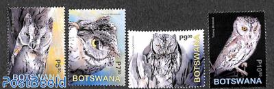 Owls 4v