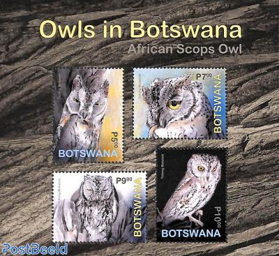Owls s/s