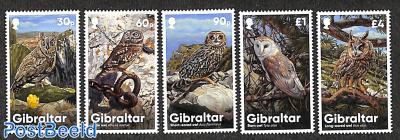 Owls 5v