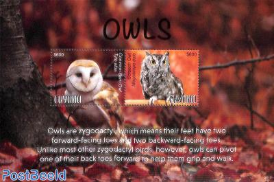 Owls 2v m/s