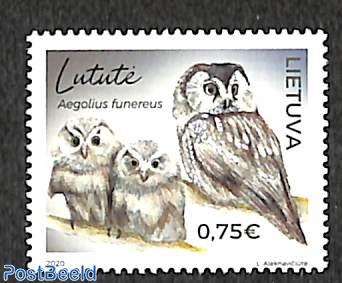 Owls 1v
