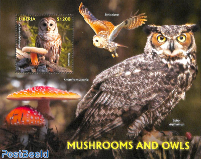 Mushrooms and owls s/s