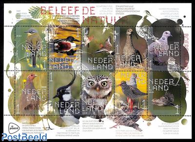 Nature, birds 10v s-a m/s