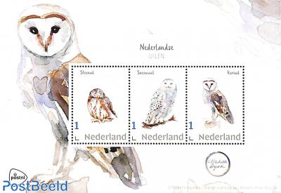 Owls 3v m/s