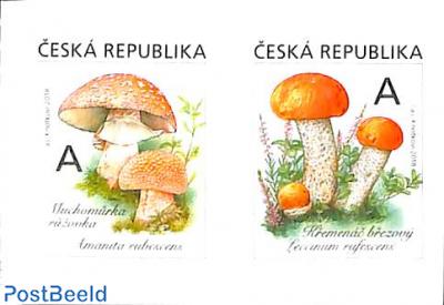 Mushrooms 2v s-a